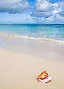 fl-beach